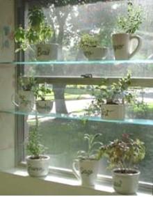 indoor herb garden window herb garden shelves u2026