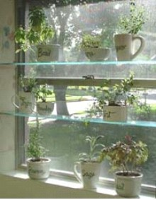 Indoor Herb Garden - Window Herb Garden Shelves