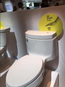 Kohler Touchless Flush Toilet